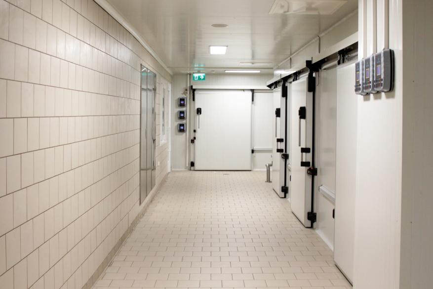 πορτες ψυκτικων θαλαμων υγειονομικού χώρου